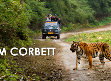 Jim-Corbett-Uttarakhand